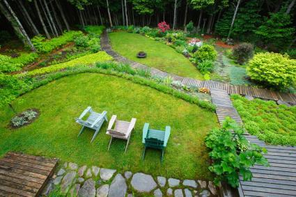 suburban backyard rain garden