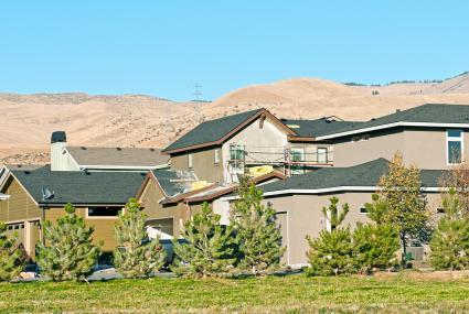 New housing development in Boise ID with windbreak of trees