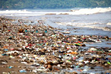 Polluted Shore Covered By Washed Up Garbage