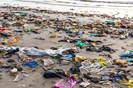 Trash and Plastics at the Beach
