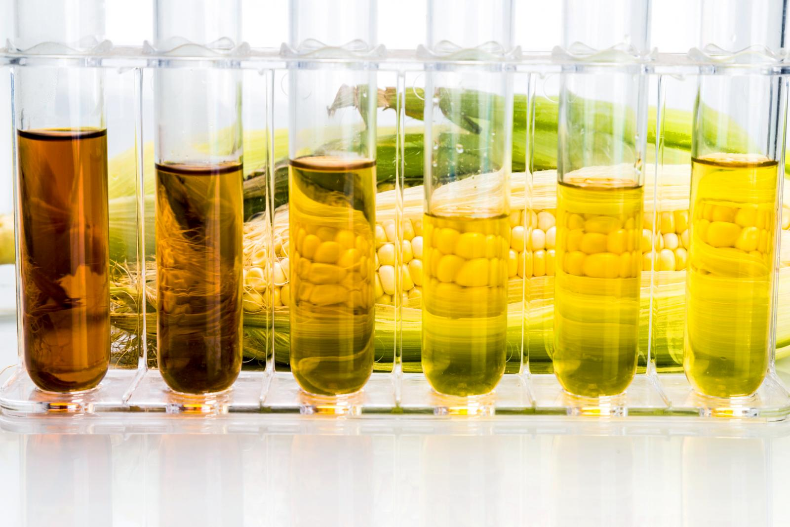 Corn derived ethanol biofuel with test tubes