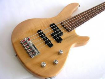 https://cf.ltkcdn.net/guitar/images/slide/175817-600x450-5-string-bass.jpg