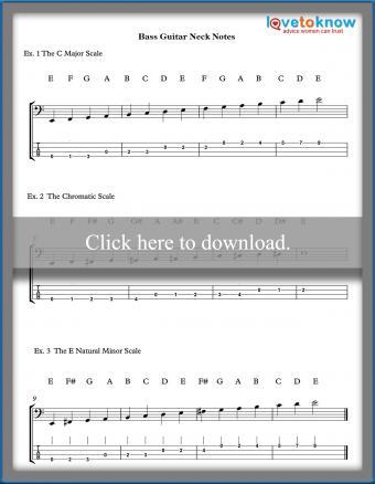 Bass-Guitar-Neck-Notes-Thumb.jpg
