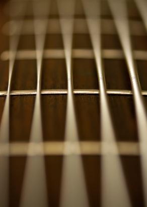 Closeup of baritone guitar strings