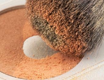 Powder and brush