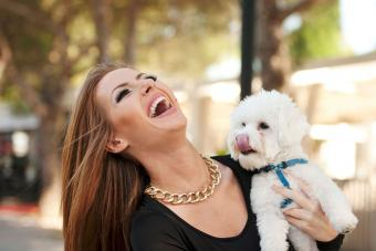 https://cf.ltkcdn.net/hair/images/slide/207747-850x567-iStock-514108241-Young-Smiling-Attractive-Woman-with-Maltese-Poodle.jpg
