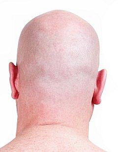 Headshave2.jpg