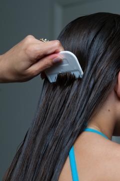 lice removal comb