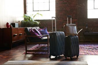Travel Totes With Trolley Sleeve