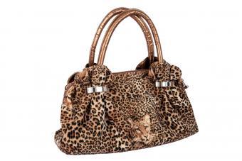 https://cf.ltkcdn.net/handbags/images/slide/250448-850x567-22_Exotic_Animal_Print_bag.jpg
