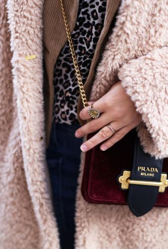 Bag detail from the Prada bag