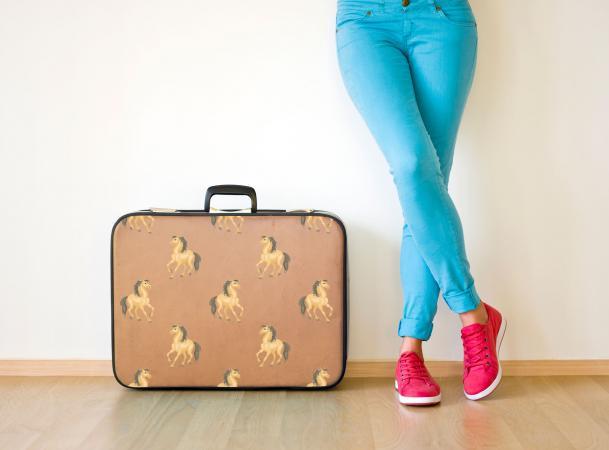 Horse Print Luggage