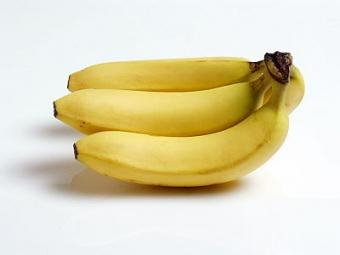 Is a Banana an Herb
