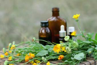 Botanical Plants to Lower Blood Pressure
