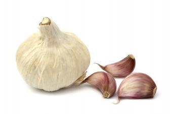 https://cf.ltkcdn.net/herbs/images/slide/123846-849x565-Garlic.jpg