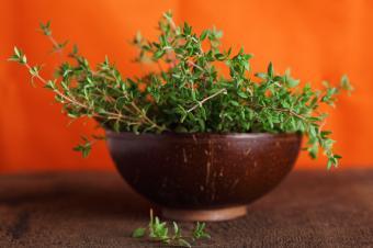 https://cf.ltkcdn.net/herbs/images/slide/123858-849x565-iStock_Thyme.jpg