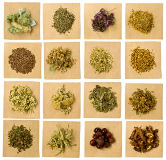 Herbs that Promote Health