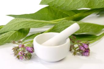 Making Comfrey Ointment