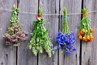 Bouquet Garni Flowers