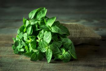 Types of Mint