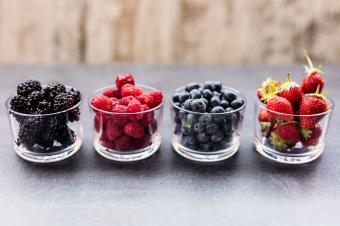 Guide to Edible Berries
