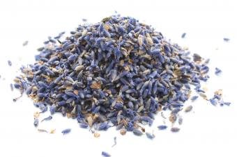 Lavender flower buds in a pile