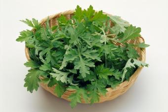 basket of mugwort