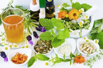 Alternative Medicine. Herbal Therapy