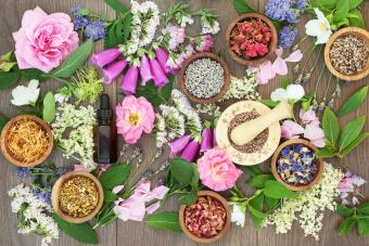 Naturopathic Flowers and Herbs