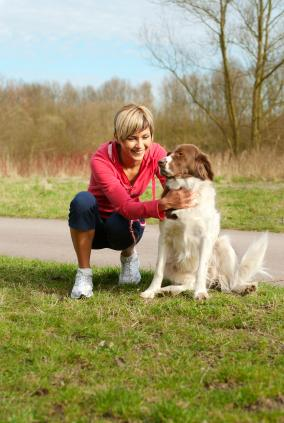 Keep Your Pet Tick Free with Natural Remedies