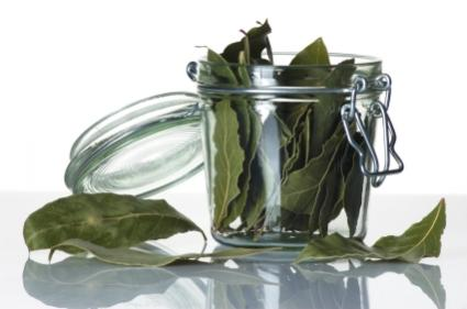 Jar of dried bay leaves