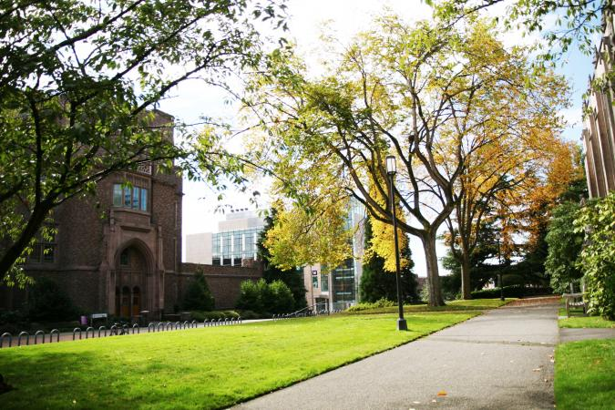 School in the autumn