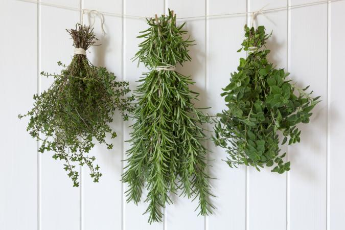 Thyme, rosemary and oregano hanging to make dried herbs