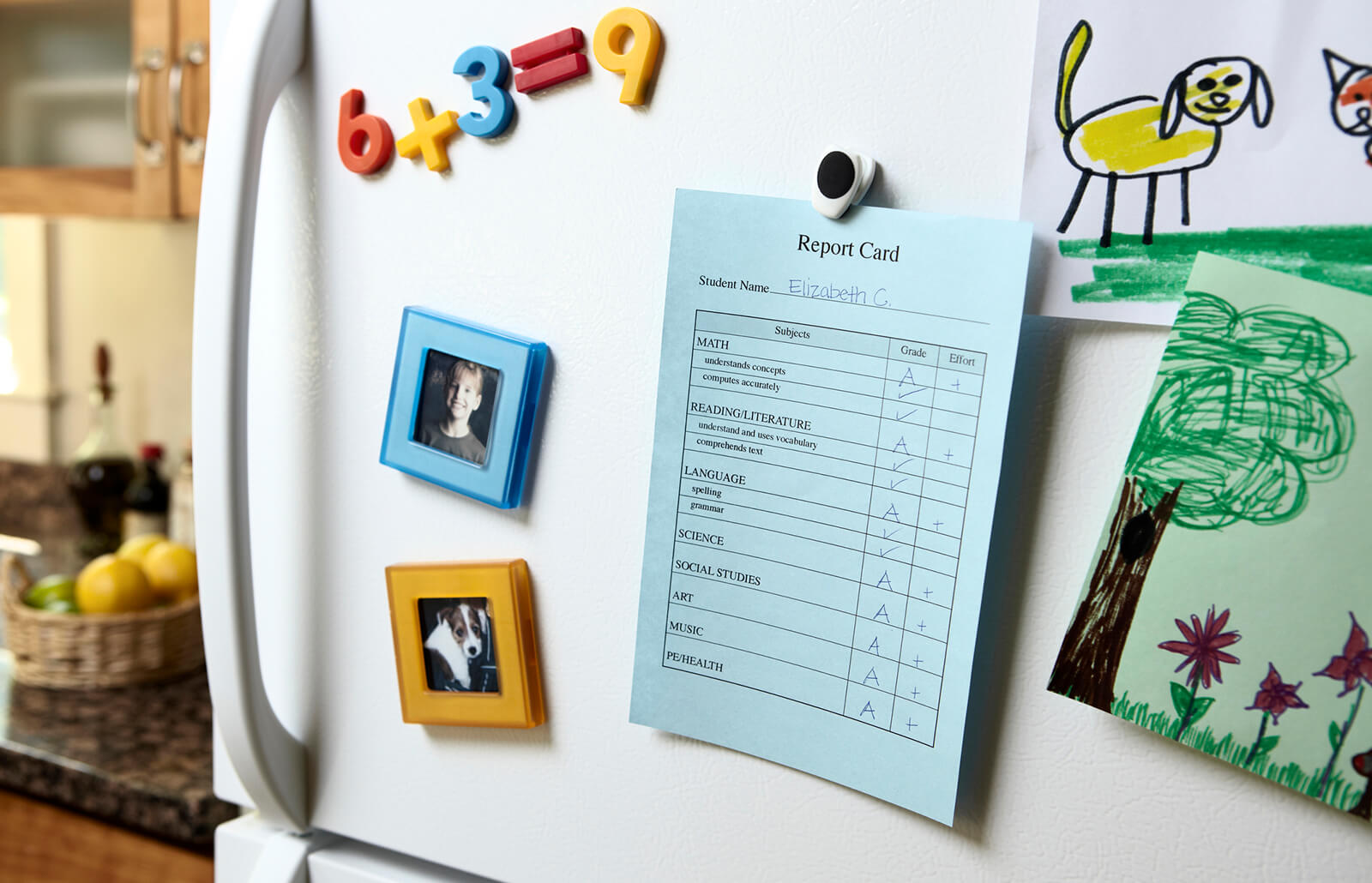 Printable Kindergarten Report Card