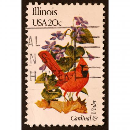 Illinois Northern Cardinal