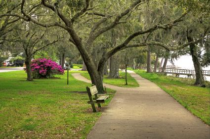 Pleasant scene with live oaks