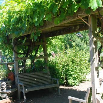 Outdoor Shade Structure Options