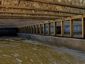 Dealing With Water in a Crawl Space