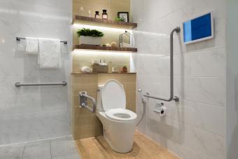 Handicap Bathroom Fixtures