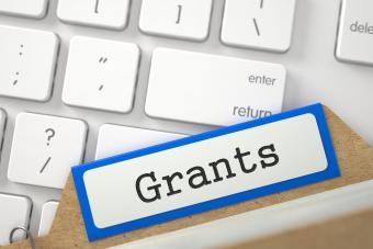 Grant application online