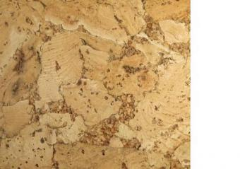 Pictures of Cork Floors