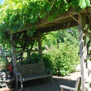 wooden shade pergola