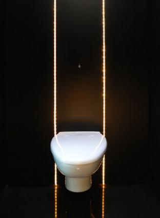 Toilet_lights.jpg