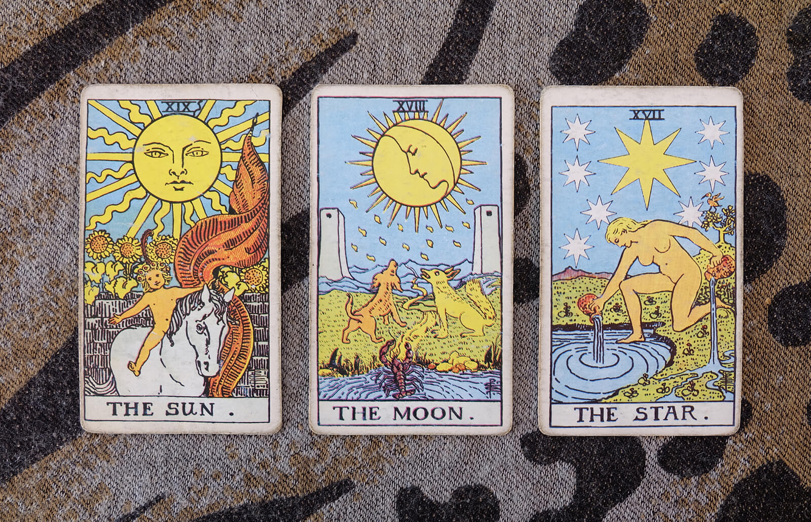 Meaning of the Moon Card in Tarot | LoveToKnow