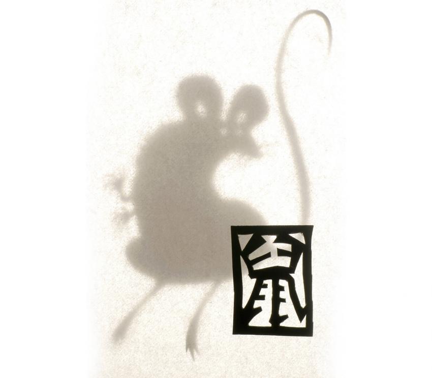 https://cf.ltkcdn.net/horoscopes/images/slide/253838-850x744-2-chinese-zodiac-signs.jpg