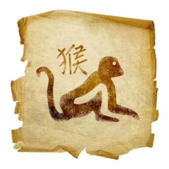 Monkey and Chinese character