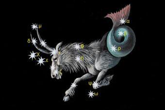 https://cf.ltkcdn.net/horoscopes/images/slide/172235-850x567-Zodiac-Capricorn.jpg
