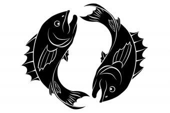 https://cf.ltkcdn.net/horoscopes/images/slide/172237-850x567-Zodiac-Pisces.jpg