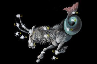 Constellation Capricorn