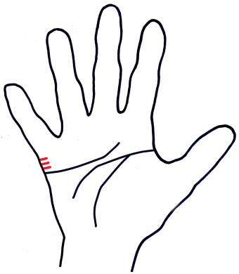 short marriage lines on hand